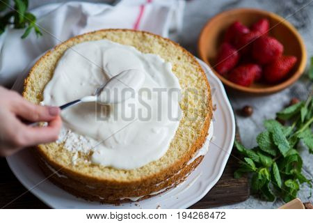 Making of Sponge Cake with Strawberry. Hand putting icing on freshly baked cake