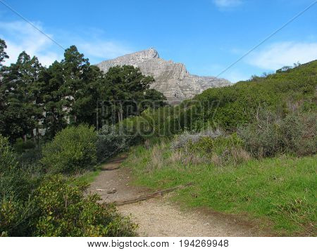TABLE MOUNTAIN NATIONAL PARK, CAPE TOWN, SOUTH AFRICA,WITH A PATH WAY IN THE FORE GROUND AND TABLE MOUNTAIN IN THE BACK GROUND 24inbe