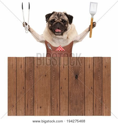smiling pug dog wearing leather barbecue apron holding meat tong and spatula behind wooden fence isolated on white background