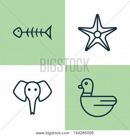 Zoo Icons Set. Collection Of Trunked Animal, Starfish, Seafood Skeleton And Other Elements. Also Includes Symbols Such As Elephant, Animal, Goose.