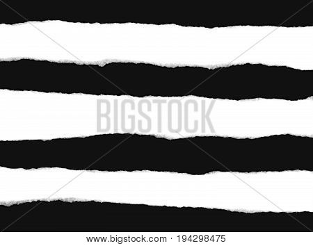 three torn strips of white paper showing the fibers isolated on a black background