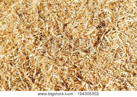 Wood Sawdust Background