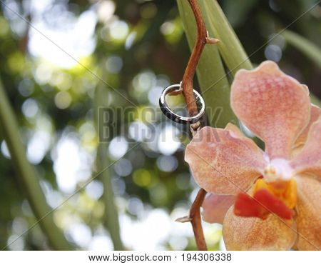 Photograph of a black tungsten ring with a beautiful orchid.