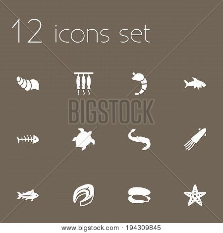 Set Of 12 Seafood Icons Set.Collection Of Acne, Asteroid, Crustaceans And Other Elements.
