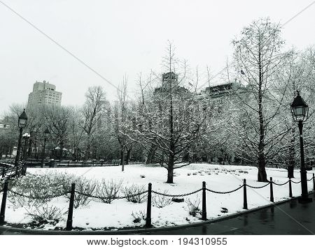 Trees and buildings with snow in winter and vintage style