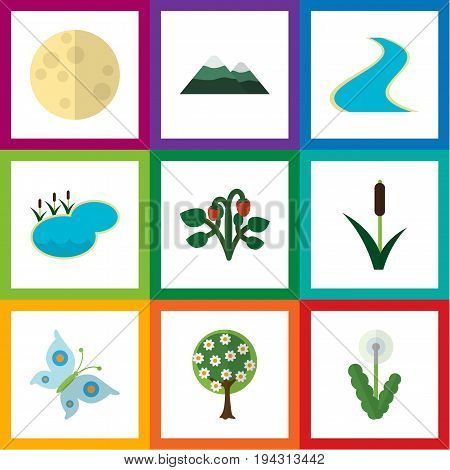 Flat Icon Nature Set Of Lunar, Floral, Tributary And Other Vector Objects. Also Includes Lunar, Tree, Reed Elements.