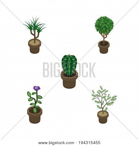 Isometric Flower Set Of Houseplant, Tree, Flower And Other Vector Objects. Also Includes Botany, Cactus, Pot Elements.