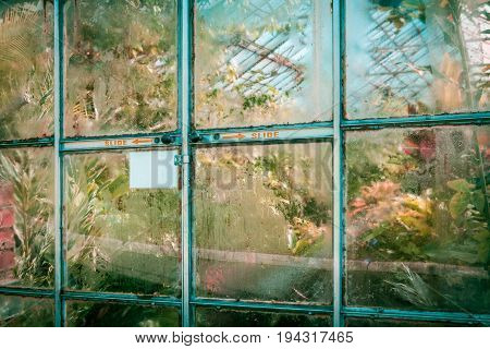 Misted up glass door into tropical glasshouse with copy space