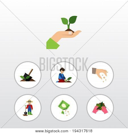 Flat Icon Seed Set Of Care, Packet, Sow And Other Vector Objects. Also Includes Sow, Hand, Seed Elements.