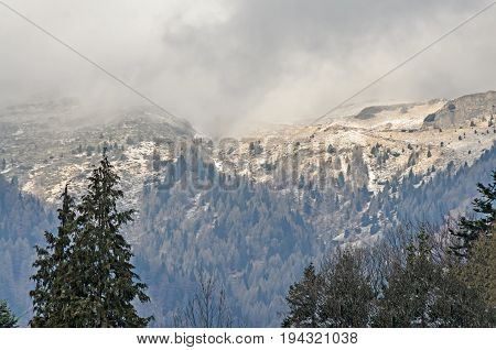 Mountain forests with yellow and green trees hills covered with snow end of winter time clouds foggy sky.