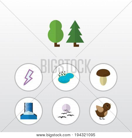 Flat Icon Natural Set Of Bird, Lightning, Gull And Other Vector Objects. Also Includes Sparrow, Thunder, Lake Elements.