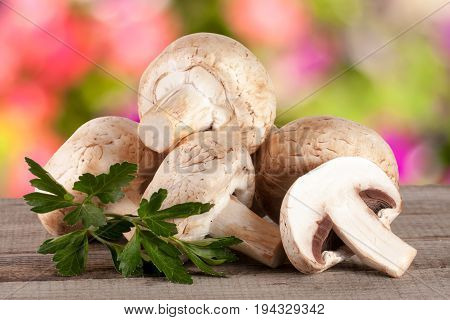 Champignon mushrooms on wooden table with blurred garden background.