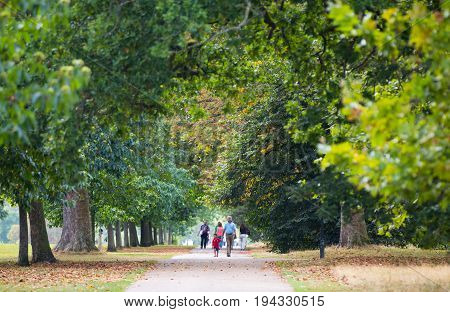 London, UK - September 8, 2016:  Hyde park and walking people on distance