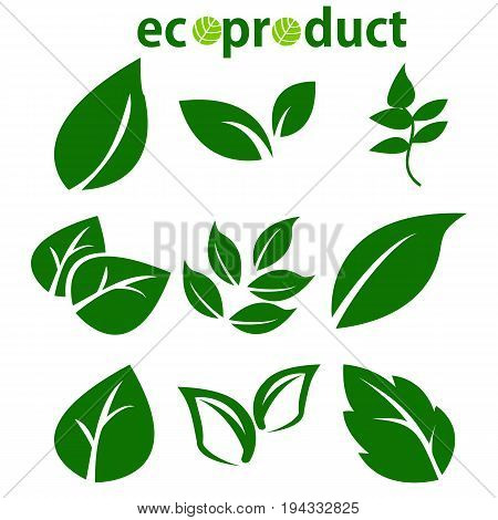 Green Leaves Collection. Leaves icon vector set isolated on white background. Various shapes of green leaves of trees and plants. Elements for eco and bio logos. Ecology symbol.Vector Illustration