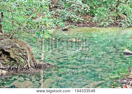 Clean And Clear Natural Water