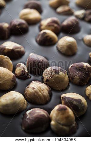 Artisanal dark chocolate bar with whole hazelnuts, macro closeup.