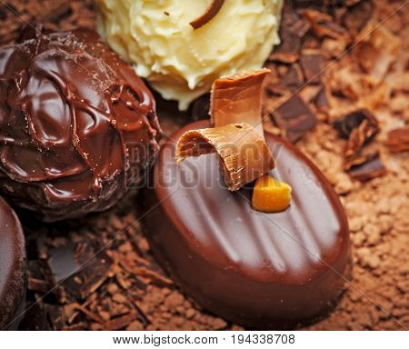 a chocolate background with pralines in detail