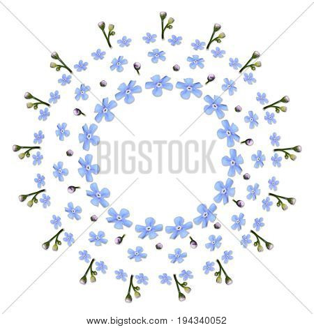 circle made of forget-me-not flowers on white