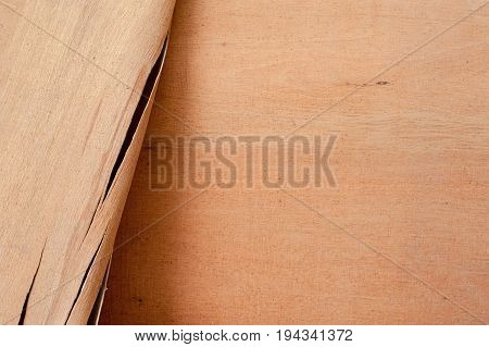 Wood texture. Wooden veneer. The surface of the tree for design and decoration