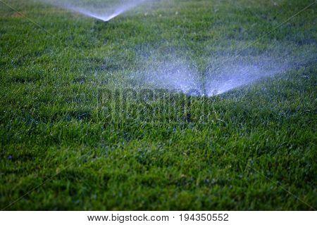 Sprinklers spraying water onto lush green grass lawn