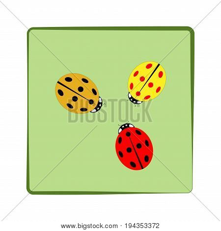Ladybird isolated. Illustration ladybug in green frame. Cute colorful sign color insect symbol spring summer garden. Template for t shirt apparel card poster. Design element Vector illustration