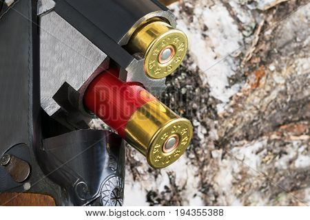 Cartridges from a gun fall on a background of rosewood