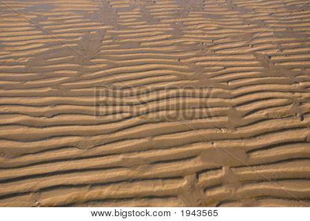 Sand Ripple On The Beach 05