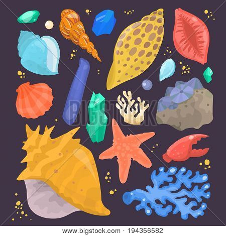 Sea shells marine cartoon clam-shell coralline and ocean starfish vector illustration.. Exotic snail aquarium beauty scallop nature seashell illustration