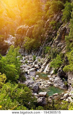 Canyon With Mountain River In Nature Park