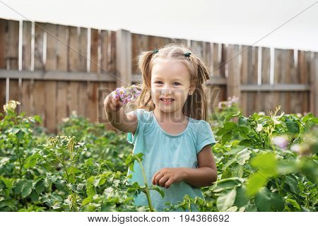 Little girl with a flower standing in the summer garden on a windy summer day