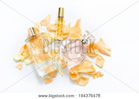 Perfume bottles with flower petals on light background. Perfumery, fragrance collection. Women accessories