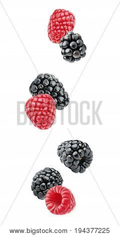 Isolated Falling Berries