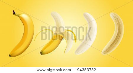 Vector illustration set of banana, half peeled and slice, transparent