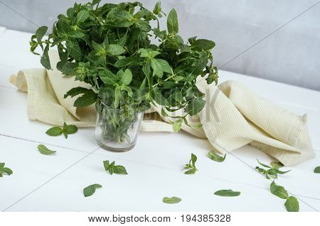 Bunch of fresh green organic mint leaf in glass on white wooden table closeup decorated with napkin on gray ascetic background. Nutrition vegan village concept. peppermint, menthol, top view.