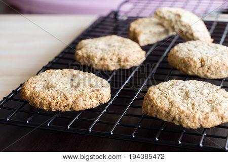 Gluten Free Homemade Oatmeal Cookies On Cooling Rack, Horizontal
