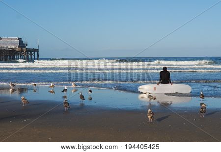 Surfer sitting on surf board at Newport Beach