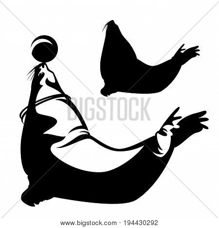 sea lion performing with ball outline and silhouette - black and white aquarium logo vector design