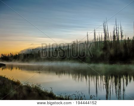 Mistic and surreal landscape with pine trees reflected in the Yellowstone River in Yellowstone National Park at sunrise with low fog, Wyoming, United States.
