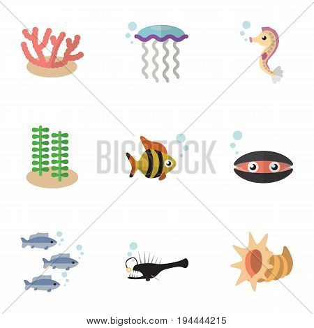 Flat Icon Marine Set Of Tuna, Algae, Fish And Other Vector Objects. Also Includes Cockleshell, Hippocampus, Algae Elements.