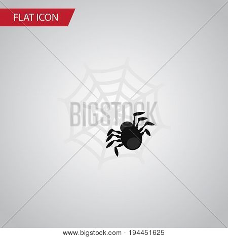 Isolated Spider Flat Icon. Spinner Vector Element Can Be Used For Spider, Arachnid, Cobweb Design Concept.