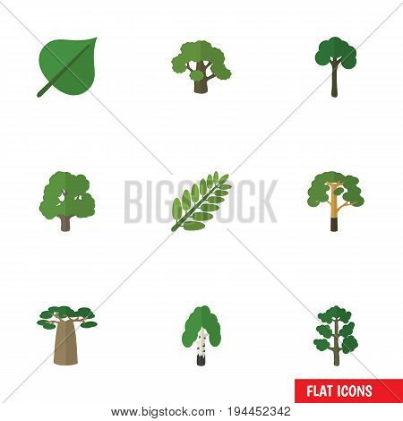 Flat Icon Ecology Set Of Hickory, Wood, Leaves And Other Vector Objects. Also Includes Baobab, Wood, Foliage Elements.