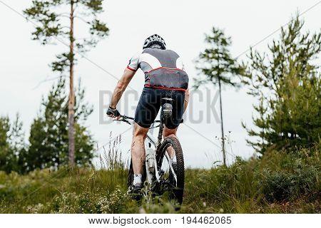 back man cyclist mountain biking on forest trail