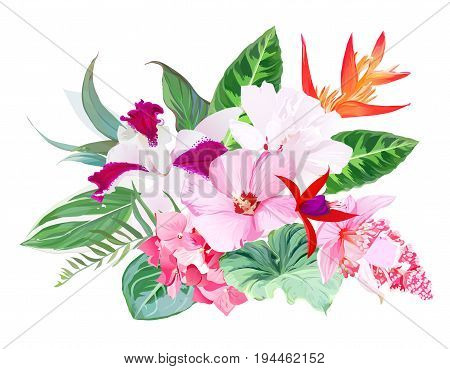 Exotic tropical floral vector bouquet arranged from hibiscus, medinilla, orchid, hydrangea, orange strelitzia, bird of paradise flower , red fuchsia set. All elements are isolated and editable.