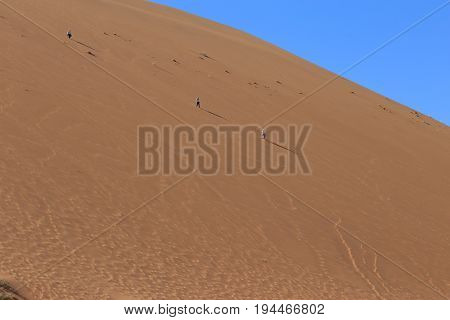 Big Daddy Dune At Sossusvlei. Namib-naukluft National Park, Namibia, Africa