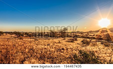 African Savanna Landscape And Sky, Namibia, South Of Africa. Real Lens Flare Effect