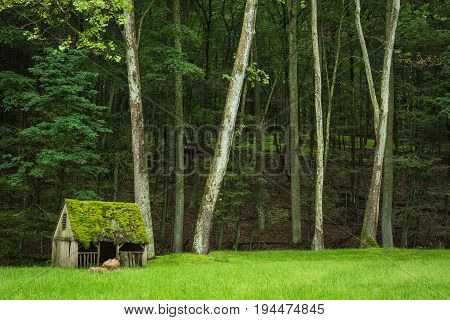 Wide shot of Cuttalossa Farm Sheep Shed in Meadow, against Tall Trees and Forest in Bucks County, Pennsylvania