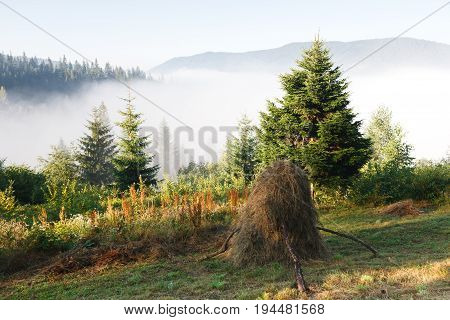 Beautiful morning nature. Overview on mountain in dense fog from green meadow in highlands with haystack in foreground, landscape background