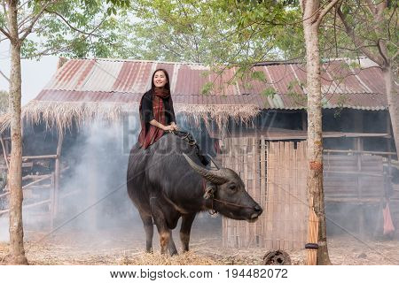 The lives of women with buffalo in the countrysideAsian girl wearing traditional Thai dress at farmland.