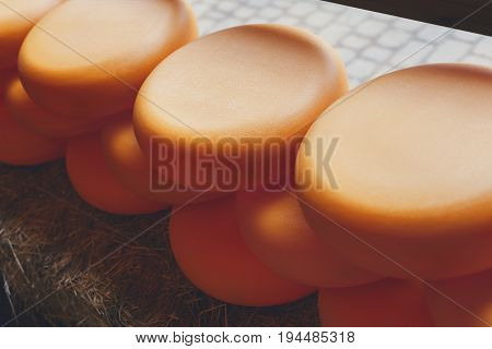 Wheels of cheese arranged in a row on straw outdoors