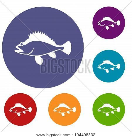 Rose fish, Sebastes norvegicus icons set in flat circle reb, blue and green color for web